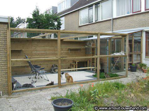 Tuin Afzetten Kat : Mijn tuin afzetten out door kattensite be
